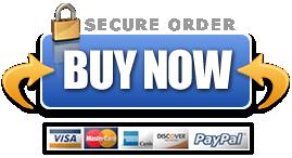 Download Business Plan Template Bundle